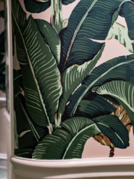 hallway, leaves, tropical, hotel, los angeles
